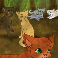 NerdTests com Test: Your Warrior cats clan and name